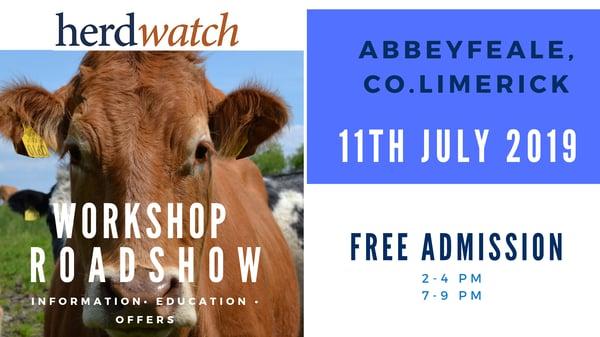 Abbeyfeale workshop promo