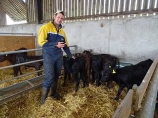 cattle-sheep-farmer-British