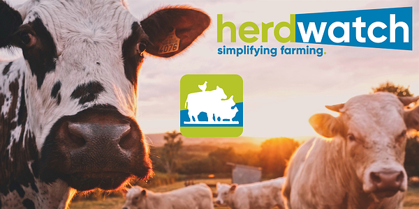 Herdwatch Rebrand Feature Graphic 1000x500