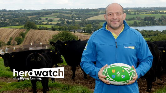 Rory Best in field with ball