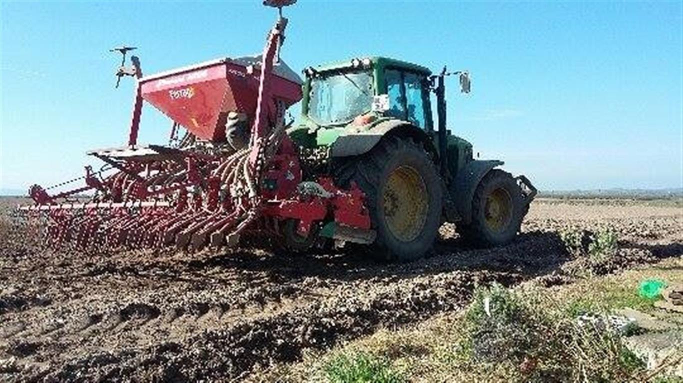 tomas-tractor (Medium).jpg